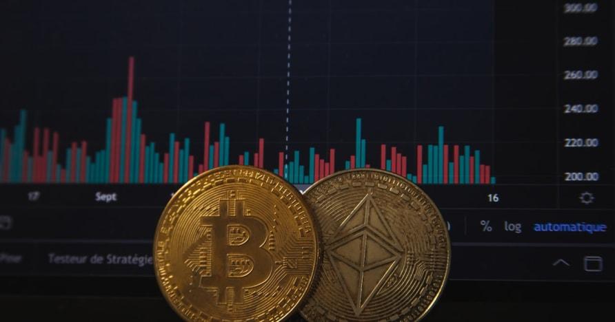 การพนัน Bitcoin จะเพิ่มขึ้นหลังจากการประกาศของ PayPal ล่าสุด